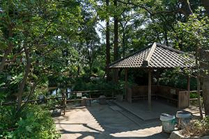 おとめ山公園 約320m(徒歩4分)