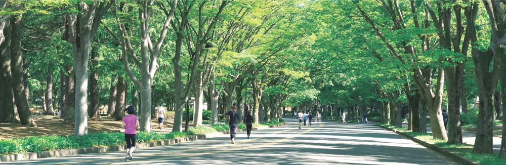 駒沢オリンピック公園 約540m(徒歩7分)