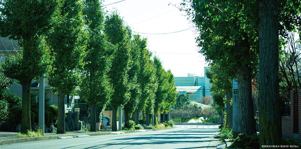 現地周辺の街並み 約210m(徒歩3分)