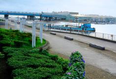 船橋港親水公園 約810m(徒歩11分)