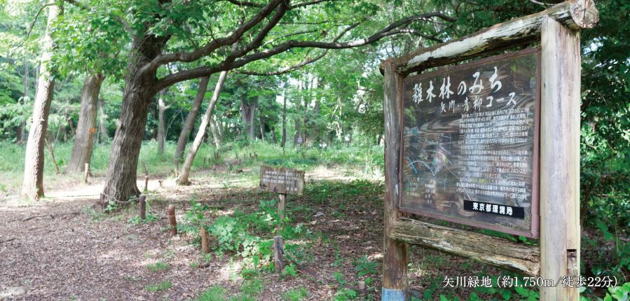 矢川緑地 約1,750m(徒歩22分)