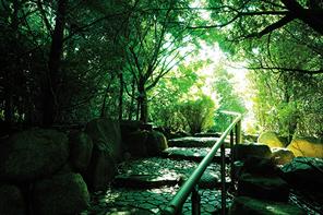 旧藤井邸(現:山手緑地) 約850m(徒歩11分)