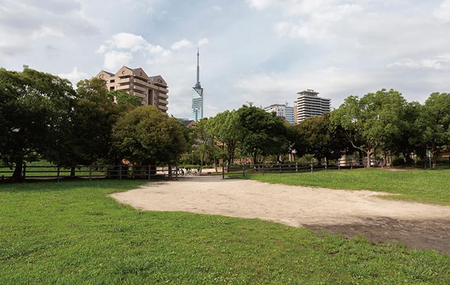 百道南公園 約220m(徒歩3分)
