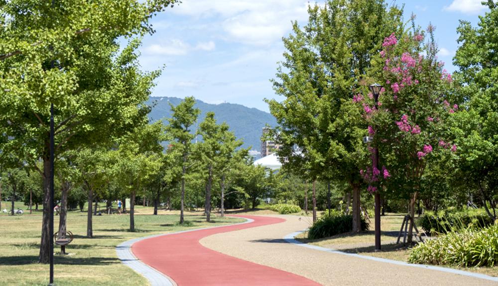 みなとのもり公園 約420m(徒歩6分)