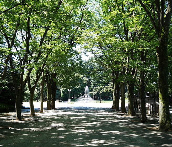 区立世田谷公園 約1,270m(徒歩16分)