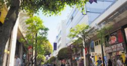 一番町四丁目商店街 約980m(徒歩13分)