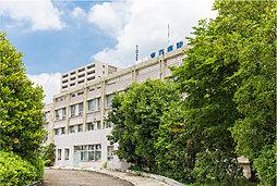 東海病院 約270m(徒歩4分)