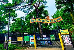県立「大宮公園」小動物園 約880m(徒歩11分)