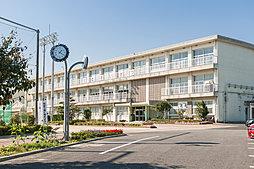 市立成岩中学校 徒歩4分(約310m)