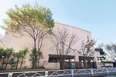 市立中川西小学校 約480m(徒歩6分)