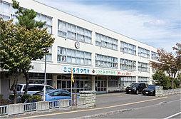 札幌市立西小学校 約690m(徒歩9分)