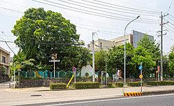 天満幼稚園 約540m(徒歩7分)