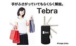 ハンズフリーシステム「Tebra」※オートロックのみ