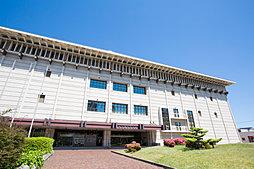 名古屋市博物館 約770m(徒歩10分)