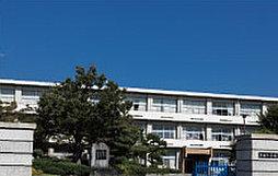 市立半田小学校 約1,020m(徒歩13分)