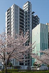 一条レジデンス三河安城(ICHIJO RESIDENCE MI...