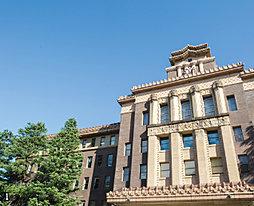名古屋市役所(東庁舎) 約790m/徒歩10分