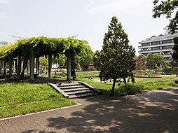 東雲公園(徒歩...