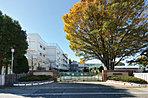 【路線図】埼玉高速鉄道・JR武蔵野線「東川口」駅徒歩11分。2路線活用で都心へスマートアクセス。