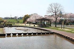 子どもも楽しめる整備された水辺の空間です。