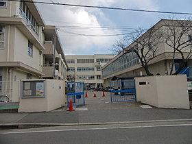 秦小学校(徒歩約10分)