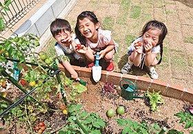 広々とした マイ庭で 子供たちと一緒に 家庭菜園はいかかが!