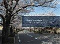 ベアーレ寿楽荘IV「建築家とつくる家」 限定2区画