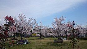 池の瀬上池広場(暫定)39m(徒歩1分)