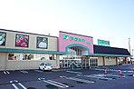 ショピングセンターフタバヤ長浜店  (徒歩19分約1,450m)
