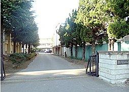 辰巳台中学校 ...