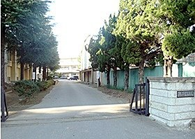 辰巳台中学校 徒歩約8分(約617m)