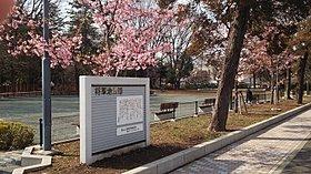 徒歩4分。身近にベンチでのんびり、緑豊かな将軍池公園、