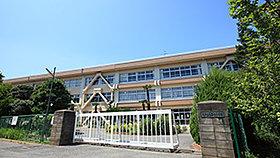 市立柏第七小学校(約420m、徒歩6分)