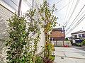【住宅性能評価取得】【田無駅徒歩11分】JR中央線にもバス便ダイレクトで利用可能な利便性
