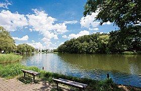 現地より徒歩14分の石神井公園