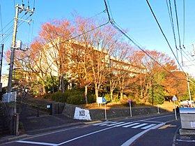横浜市立橘中学校まで788m