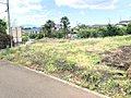 角地2区画含む全6区画30坪以上の条件なし開発分譲地の誕生です♪