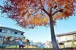八王子市石川町 広い家に住みたい ~家族が集う住まいを~