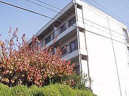 マンション香楽[3階]の外観