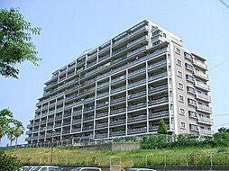 福岡県古賀市千鳥1丁目の賃貸マンションの外観