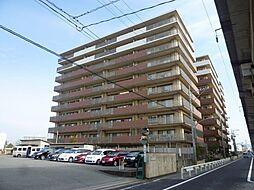 ファーネスト箱崎公園[503号室]の外観