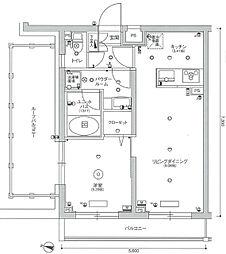 スカイコート渋谷北参道 5階1LDKの間取り