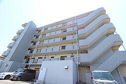 神奈川県平塚市東真土1丁目の賃貸マンションの外観