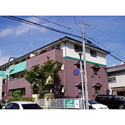 藤蔵ドムス[3階]の外観