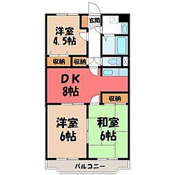 栃木県小山市西城南6丁目の賃貸マンションの間取り