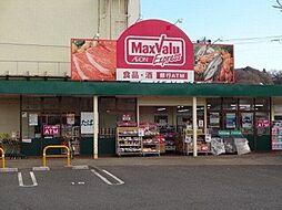 マックスバリュエクスプレス平山団地店 260m