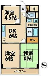 須藤パークハイツ[202号室]の間取り