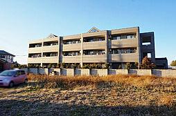 栃木県小山市大字粟宮の賃貸マンションの外観