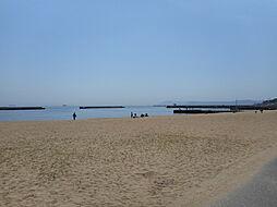 須磨海岸 567m