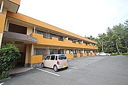 愛知県豊橋市草間町字東山の賃貸アパートの外観